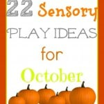 22 Fall Sensory Play Ideas