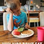 5 Reasons Kids Refuse to Eat