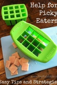 Picky Eater Kids- FunBites Review