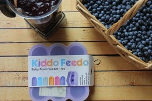Blueberry & Apple Baby Food and Fruit Leather
