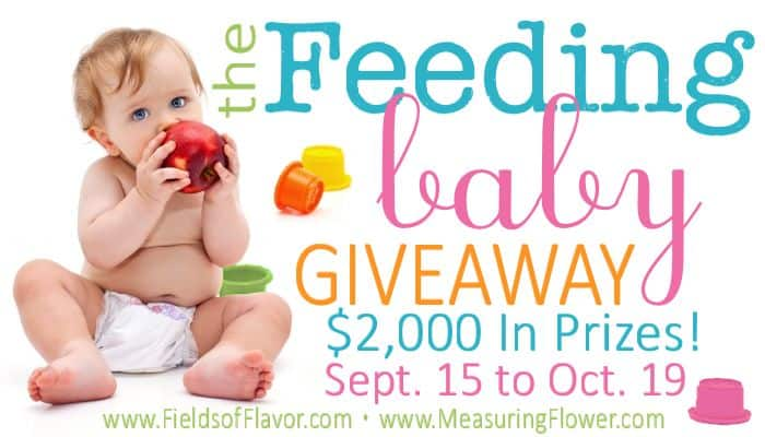 Feeding Baby Cookbook Release Party & Giveaway over $2000 in Prizes