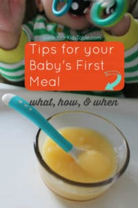 Introducing Baby Food: Everything You Need to Know