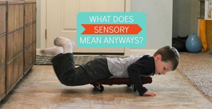 Sensory Basics