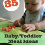 Ultimate List of Baby/Toddler Meal Ideas