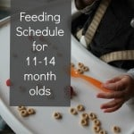 Feeding Schedule for 11, 12, and 13 month olds