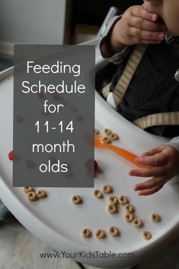 Feeding Schedule for 11-14 months