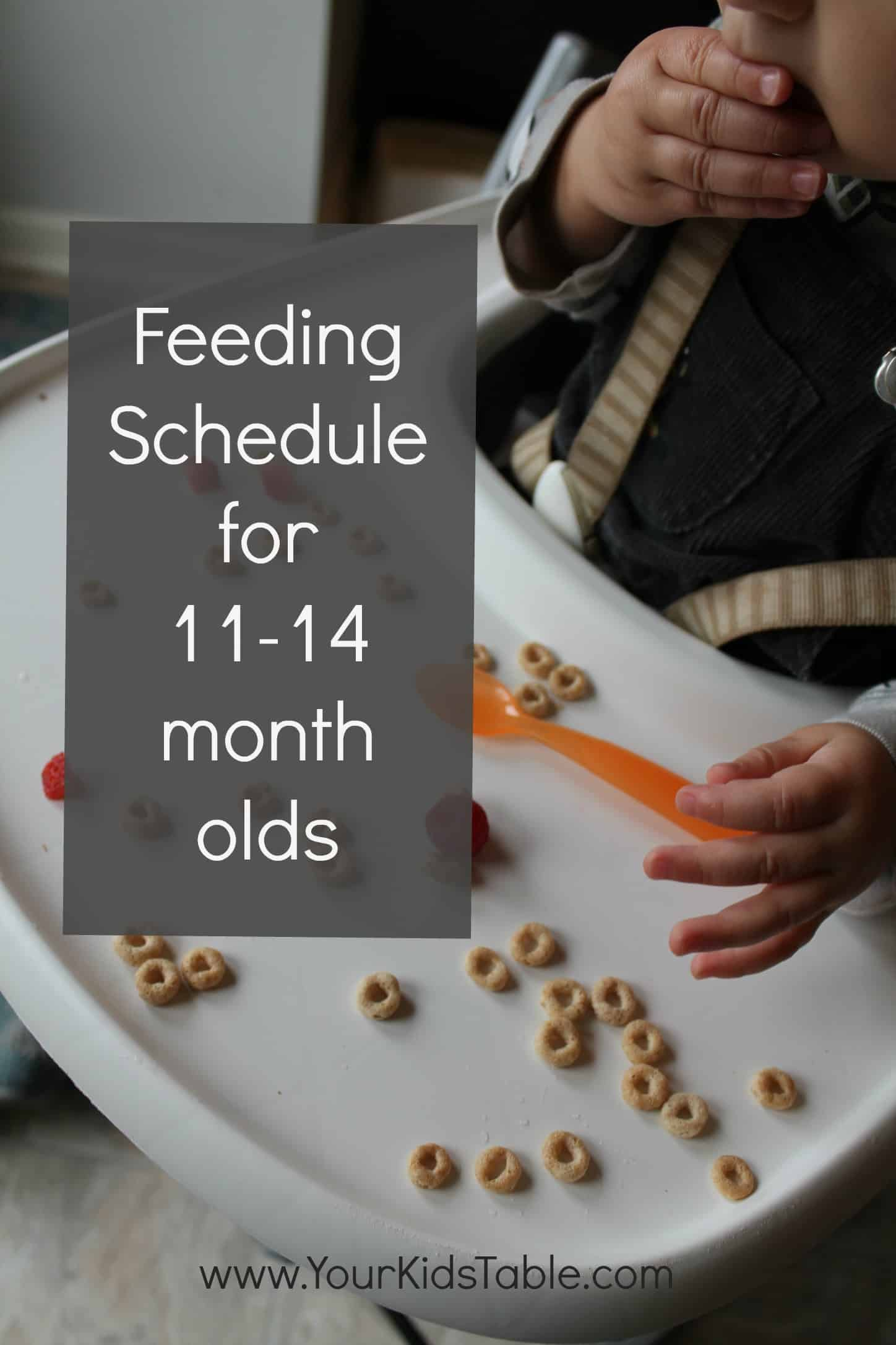 Feeding Schedule for 11, 12, and 13 month olds - Your Kid's Table