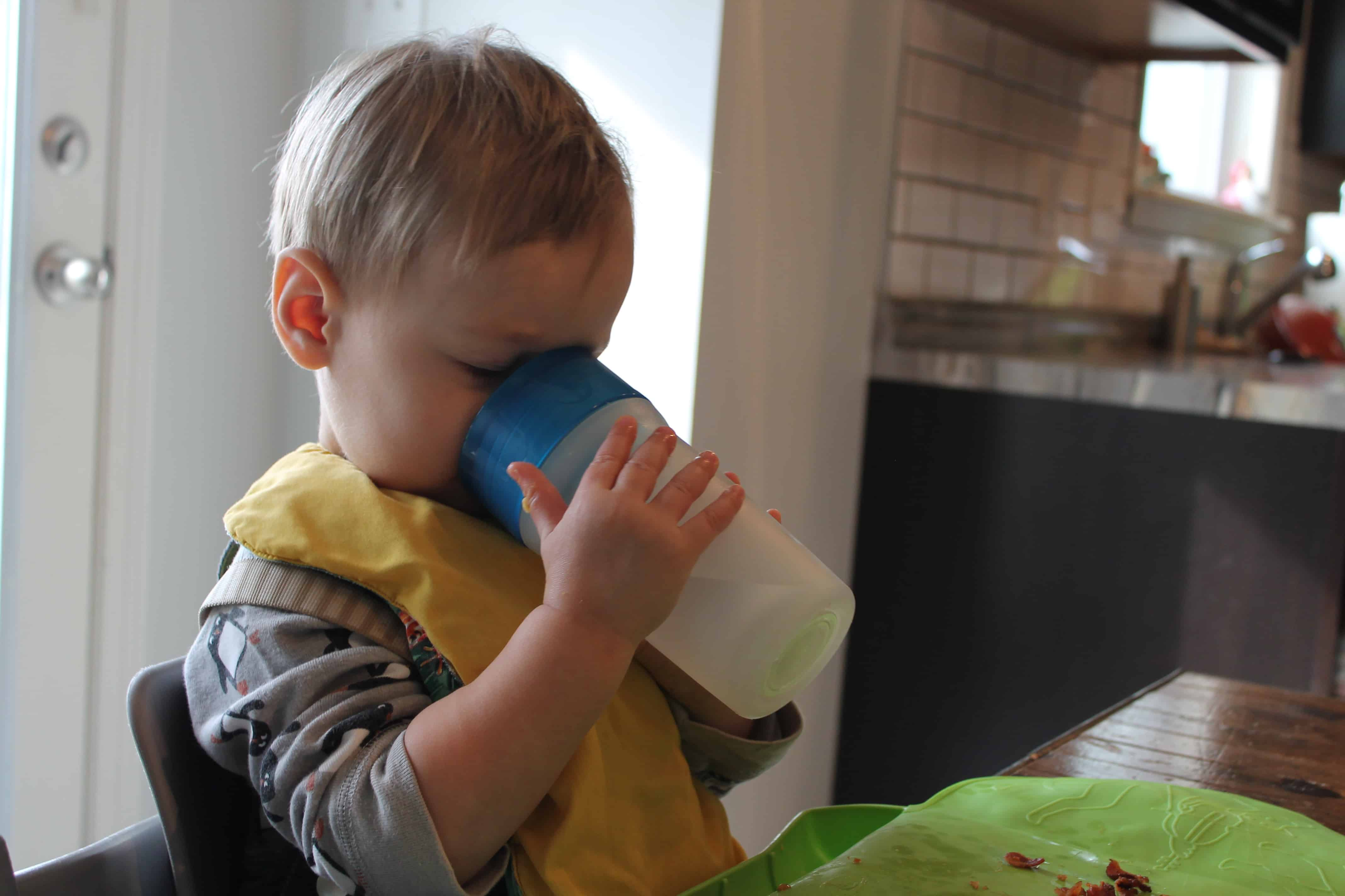 Easy Feeding Schedule for 1 Year Olds - Your Kid's Table