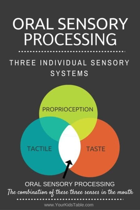 Did you know that oral sensory really combines three different sensory systems? Find out how that works and why it matters...