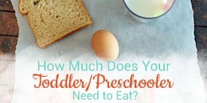 Toddler portion sizes from a feeding expert and licensed occupational therapist