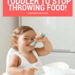 6 Tips to Get Babies and Toddler's to Stop Throwing Food!