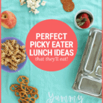 Perfect Lunch Ideas for Picky Eaters at School, Home, or Daycare
