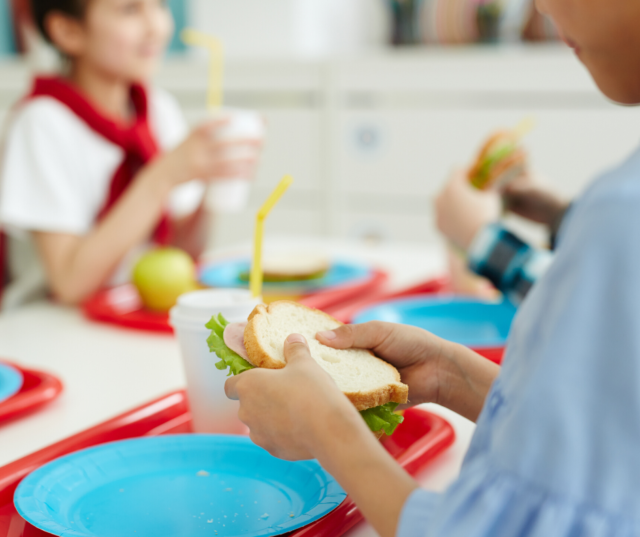 It's such a bummer when picky eaters won't eat the school lunch! But, it's possible for your picky eating kiddo to learn to eat the lunch that's provided. Check out these 7 tips to learn how....