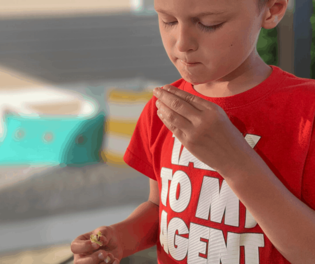 Snag these 3 easy and fun dinner ideas to use with your family on a summer day for dinner. They're clever and may just have your child reaching to try a new food. Affiliate links used below.