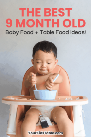 The Best 9 Month Old Baby Food + Table Food Ideas!