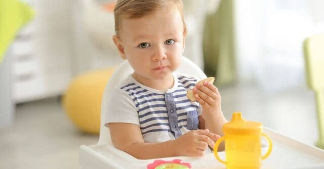 Help, my toddler won't eat dinner! We've got you covered with 5 quick tricks you can start using right away to help your toddler at the dinner table. Plus, some toddler approved dinner ideas too.