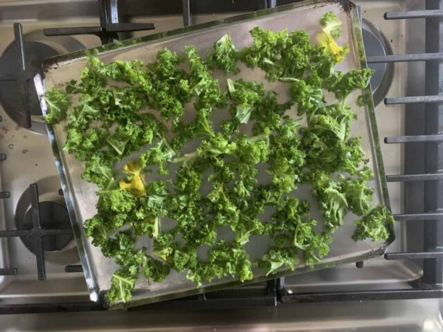 Kale is an amazing super food and this kale chips recipe is a perfect way to get it into your kids, even if they're a picky eater. Enjoy these kale chips as an after school snack or side dish!